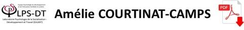 LPS-DT_Axe3_COURTINAT-CAMPS_Amelie